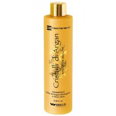 Bio Argan Shampoo - Шампунь для волос с маслом Аргании и Алоэ, 250 мл